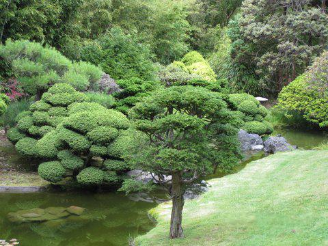 Joli jardin zen
